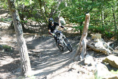 Ποδήλατο άσκησης νεαρών άνδρων moutain στο δάσος στοκ φωτογραφίες