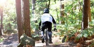 Ποδήλατο άσκησης νεαρών άνδρων moutain στο δάσος στοκ εικόνες