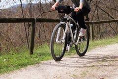 Ποδήλατο βουνών μορίων γυναικών Στοκ φωτογραφία με δικαίωμα ελεύθερης χρήσης