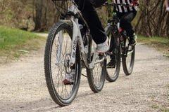 Ποδήλατο βουνών μορίων μητέρων και γιων Στοκ Εικόνες