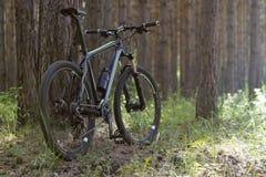 Ποδήλατο βουνών στα ξύλα Στοκ Φωτογραφίες