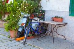 Ποδήλατο και ένα μηχανικό δίκυκλο μηχανών που αφήνεται και που εισβάλλεται από τους θάμνους Στοκ Εικόνες