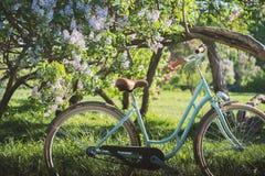 Ποδήλατο κοντά στο δέντρο λουλουδιών το καλοκαίρι πάρκων Στοκ φωτογραφία με δικαίωμα ελεύθερης χρήσης