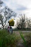 Ποδήλατο με ένα καλάθι Στοκ Φωτογραφίες