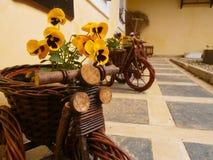 Ποδήλατο λουλουδιών Στοκ φωτογραφίες με δικαίωμα ελεύθερης χρήσης