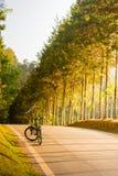Ποδήλατο στον κήπο Στοκ φωτογραφία με δικαίωμα ελεύθερης χρήσης