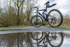 Ποδήλατο στο δασικό ίχνος Στοκ εικόνες με δικαίωμα ελεύθερης χρήσης