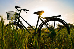 Ποδήλατο στο λιβάδι Στοκ Φωτογραφίες