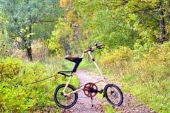 Ποδήλατο Strida στο δασικό δρόμο Στοκ φωτογραφίες με δικαίωμα ελεύθερης χρήσης