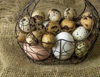 Πολλή δομή μετάλλων αυγών κοτόπουλου και αυγών ορτυκιών με μορφή μιας καρδιάς που βρίσκεται σε έναν ξύλινο πίνακα στοκ εικόνα με δικαίωμα ελεύθερης χρήσης