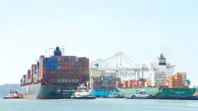 Πολλαπλάσιος ελιγμός φορτηγών πλοίων στις αποβάθρες στο λιμένα του Όουκλαντ στοκ εικόνα