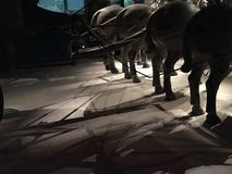 Πολεμιστές τερακότας Στοκ φωτογραφία με δικαίωμα ελεύθερης χρήσης