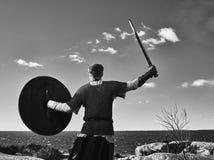 Πολεμιστής Βίκινγκ Στοκ Εικόνα