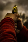 Πολεμιστής Βίκινγκ Στοκ εικόνα με δικαίωμα ελεύθερης χρήσης