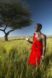 Πολεμιστής Masai κοντά στο δέντρο ακακιών που ακούει τη μουσική στο iPod από τη Apple στο κόκκινο τοπίο έρευνας της συντήρησης Le Στοκ Φωτογραφία