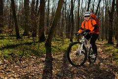 Ποδηλάτης βουνών που οδηγά στο ποδήλατο στο πιό springforest τοπίο Στοκ Εικόνα
