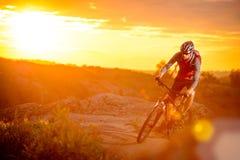 Ποδηλάτης που οδηγά το ποδήλατο στο ίχνος βουνών στο ηλιοβασίλεμα Στοκ εικόνες με δικαίωμα ελεύθερης χρήσης
