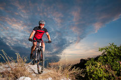 Ποδηλάτης στις φυλές ποδηλάτων βουνών προς τα κάτω στη φύση Στοκ Εικόνες