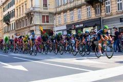 Ποδηλάτης, Giro d'Italia Στοκ Φωτογραφίες