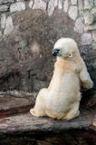 Πολική αρκούδα που τεντώνει το λαιμό του Στοκ Εικόνες