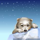 Πολική αρκούδα 2 διανυσματική απεικόνιση