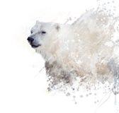 Πολική αρκούδα Watercolor Στοκ Εικόνα