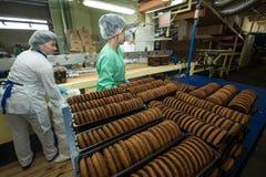 Πολλοί γλυκιά ογκώδης παραγωγή εργοστασίων τροφίμων κέικ Στοκ εικόνα με δικαίωμα ελεύθερης χρήσης