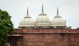 Πολλοί θόλοι στο οχυρό Agra σε Agra, Ινδία στοκ εικόνες