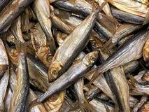 Πολλοί καπνισμένη κινηματογράφηση σε πρώτο πλάνο κλυπεών ψαριών Στοκ Φωτογραφίες