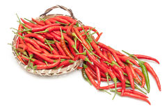 Πολλοί κόκκινο τσίλι, καυτός και πικάντικος στον πίνακα για την επιλογή και το μαγείρεμα Στοκ εικόνες με δικαίωμα ελεύθερης χρήσης