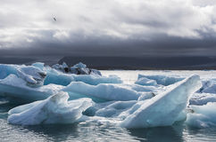 Πολλοί φραγμοί πάγου στη λίμνη Jokulsarlon, Ισλανδία Στοκ φωτογραφία με δικαίωμα ελεύθερης χρήσης