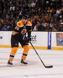 Πολυάσχολος του Blake, μπροστινός, Boston Bruins Στοκ Εικόνα