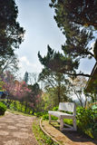 Πολυθρόνα στον κήπο στο ANG Khang, Chiang Mai Doi Στοκ εικόνες με δικαίωμα ελεύθερης χρήσης