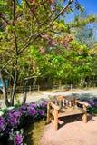 Πολυθρόνα στον κήπο στο ANG Khang, Chiang Mai Doi Στοκ Φωτογραφία