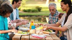 Πολυμελής οικογένεια που έχει ένα υπαίθριο μεσημεριανό γεύμα απόθεμα βίντεο