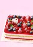 Πολυστρωματικό Mousse μούρων και φυστικιών κέικ στοκ φωτογραφία με δικαίωμα ελεύθερης χρήσης