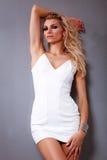 Πολυτέλεια supermodel Στοκ εικόνα με δικαίωμα ελεύθερης χρήσης