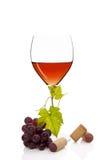Πολυτελής αυξήθηκε κρασί. Στοκ Εικόνες