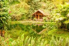 Πολυτελής εξωτική καλύβα στη λεκάνη Ισημερινός του Αμαζονίου Στοκ Φωτογραφίες