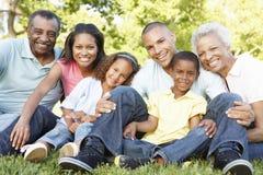 Πολυ οικογενειακή χαλάρωση αφροαμερικάνων παραγωγής στο πάρκο στοκ φωτογραφία