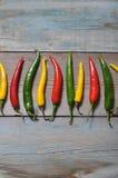 Πολυ χρωματισμένα καυτά πιπέρια τσίλι Στοκ εικόνα με δικαίωμα ελεύθερης χρήσης