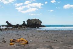Πολυ χρωματισμένοι βράχοι σε Playa EL Tunco, Ελ Σαλβαδόρ Στοκ Εικόνα