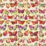 Πολυ χρωματισμένο υπόβαθρο κολάζ πεταλούδων watercolor Στοκ Φωτογραφία