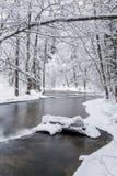 Πολωνία - Roztocze, χειμώνας Στοκ Εικόνες