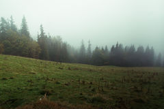 Πολωνικά βουνά Στοκ Εικόνες