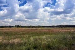 Πολωνικά λιβάδια, Πολωνία Στοκ Εικόνες