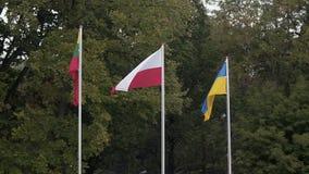Πολωνική εθνική σημαία φιλμ μικρού μήκους