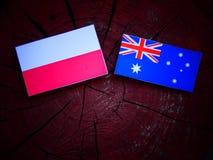 Πολωνική σημαία με την αυστραλιανή σημαία σε ένα κολόβωμα δέντρων που απομονώνεται Στοκ Φωτογραφίες