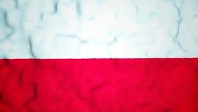 Πολωνικός άνευ ραφής τηλεοπτικός βρόχος σημαιών απόθεμα βίντεο