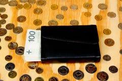 Πολωνικός μισθός χρημάτων στοκ εικόνες με δικαίωμα ελεύθερης χρήσης